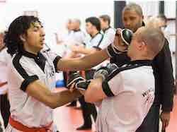 Wing Chun Nederland